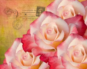 rose calendars cover and January