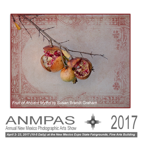 ANMPAS 2017