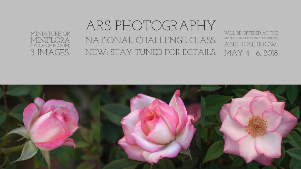 ARS photography challenge class