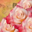 rose calendar cover and January